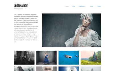 Gratis WordPress Portfolio Themes