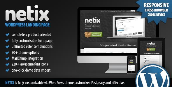 Netix Landing Page Theme