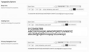 Typography Options WordPress Theme