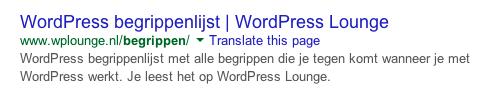 Metadata Google WordPress