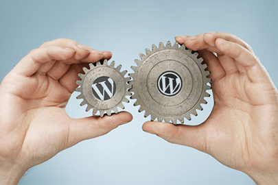 Plugins voor WordPress developers