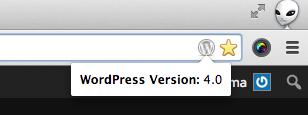 WordPress Version Check