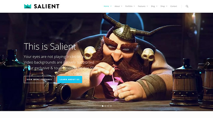 Salient: Beste Responsive WordPress Theme