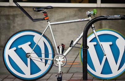 Tekst zoeken en vervangen in WordPress