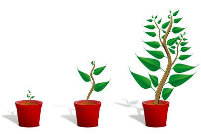 Tips: SEO van een groeiende blog gestructureerd houden