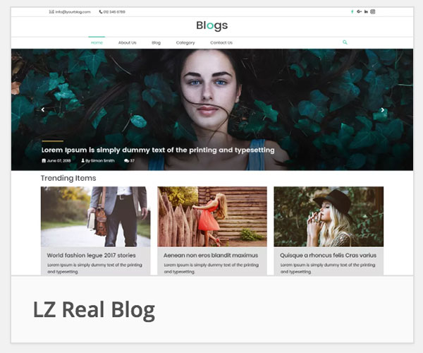 LZ Real Blog