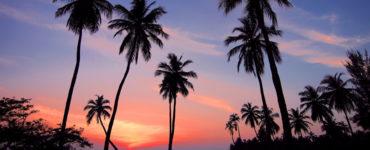 Je blog draaiende houden tijdens je vakantie