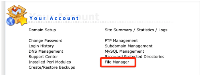 DirectAdmin File Manager