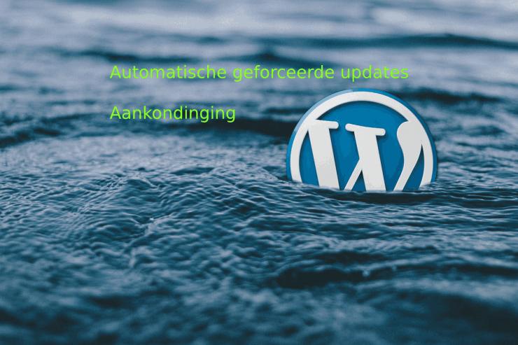 WordPress automatische geforceerde update