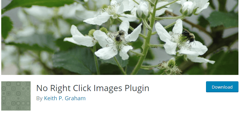 No Right Click Images plugin