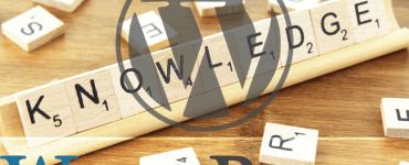 WordPress kennis - onze meestgelezen artikelen