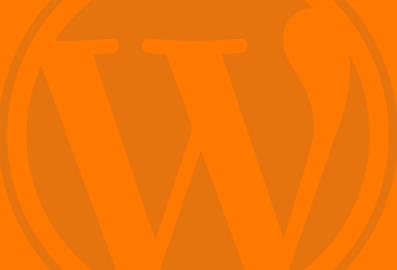 WordPress Hulp op Afstand