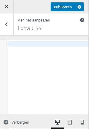 Extra CSS WordPress